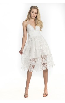 Mini lace embroidered tulle dress