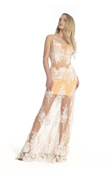 Long transparent lace dress with embroidered top